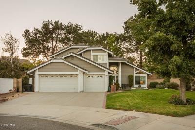 Simi Valley Single Family Home For Sale: 6007 Buffalo Street