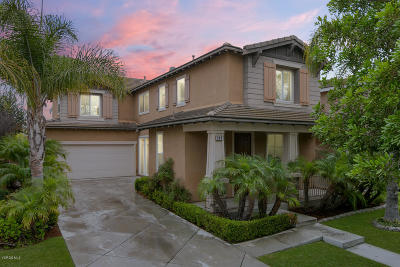 Oxnard Single Family Home For Sale: 804 Gitano Drive