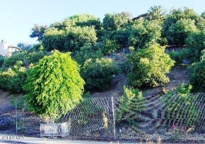 Santa Paula Residential Lots & Land For Sale: 233 View Drive