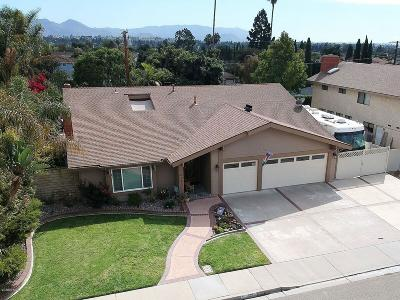 Camarillo Single Family Home For Sale: 1652 Daphne Street