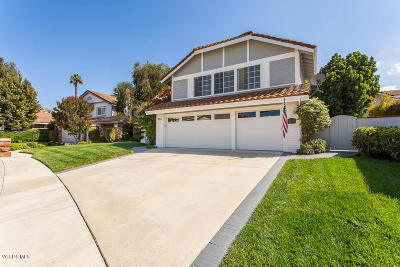 Thousand Oaks Single Family Home For Sale: 3378 Montagne Way