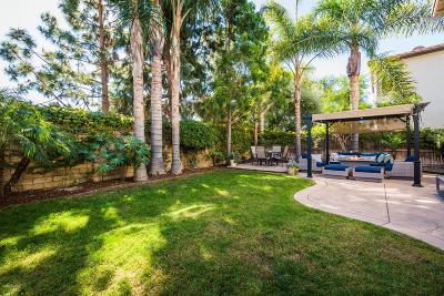 Camarillo Single Family Home For Sale: 1768 Santo Domingo