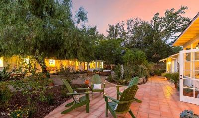 Ojai Single Family Home For Sale: 505 Grand Avenue