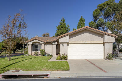 Camarillo Single Family Home For Sale: 6005 San Dimas Avenue