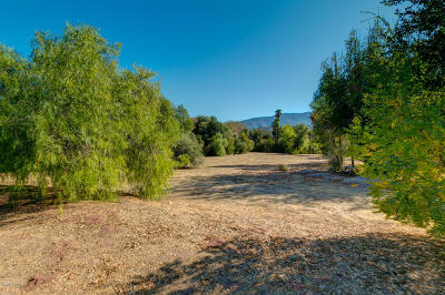 Ventura County Residential Lots & Land For Sale: Grand Avenue