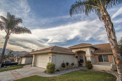 Ventura Single Family Home For Sale: 217 Los Cabos Lane