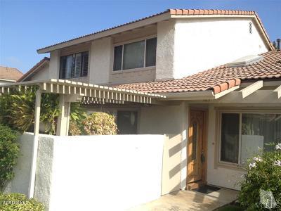 Camarillo Rental For Rent: 383 Sonora Drive