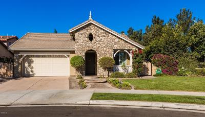 Camarillo Single Family Home For Sale: 3887 Hedge Lane