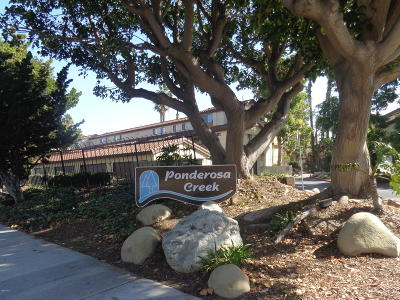Camarillo Condo/Townhouse For Sale: 1190 Via Montoya #55