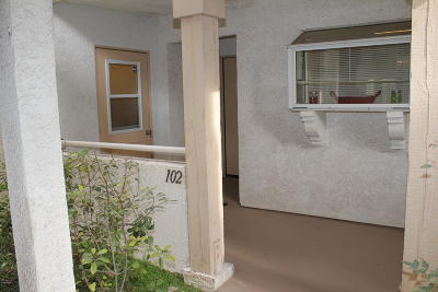 Camarillo Condo/Townhouse For Sale: 2623 Antonio Drive #102