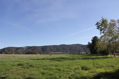 Ventura County Residential Lots & Land For Sale: 11999 Ojai Santa Paula