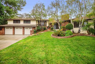 Westlake Village Single Family Home For Sale: 4201 Saddlecrest Lane