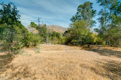 Residential Lots & Land For Sale: 701 Del Oro Drive