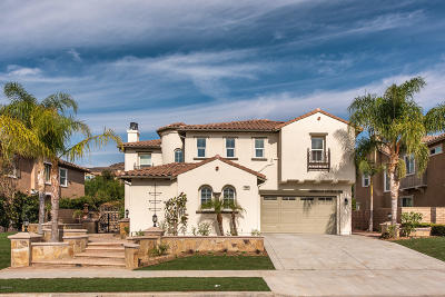 Simi Valley Single Family Home For Sale: 5035 Corral Street