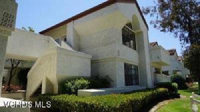 Camarillo Rental For Rent: 1225 Mission Verde Drive #1
