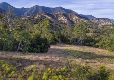 Ojai Residential Lots & Land Active Under Contract: 1218 Foothill Road