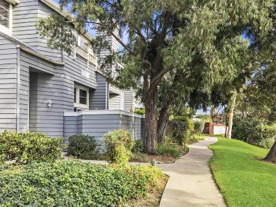Ventura Rental For Rent: 4975 Telephone Road