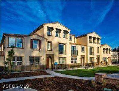 Camarillo Condo/Townhouse For Sale: 481 Pecana Street