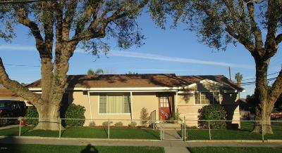 Santa Paula Single Family Home For Sale: 203 Palm Avenue