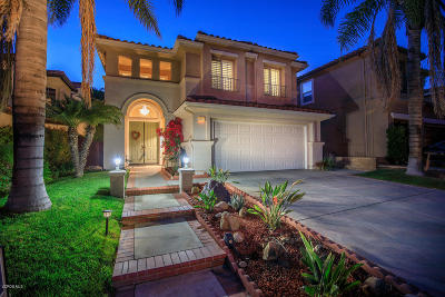 Thousand Oaks Single Family Home For Sale: 2853 Blazing Star Drive