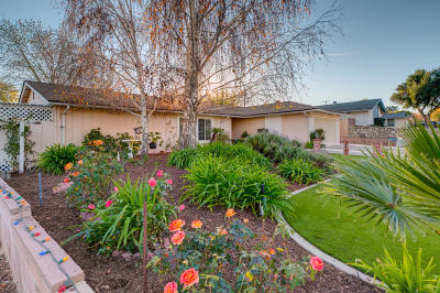 Ojai Single Family Home For Sale: 96 Valley Ridge Street
