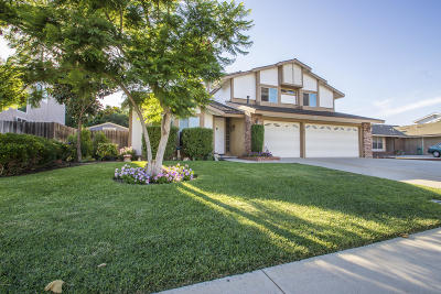 Camarillo Single Family Home For Sale: 305 Appletree Avenue