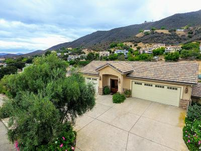 Newbury Park Single Family Home For Sale: 594 Kathleen Drive