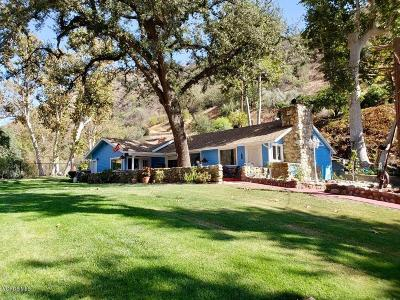 Fillmore Single Family Home For Sale: 26 4th Street