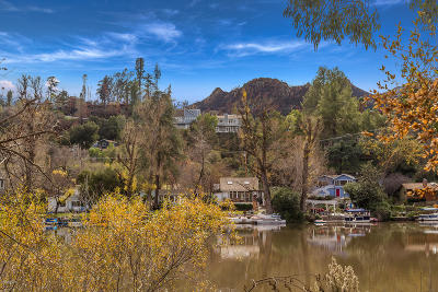 Agoura Hills Single Family Home For Sale: 1988 Lookout Drive