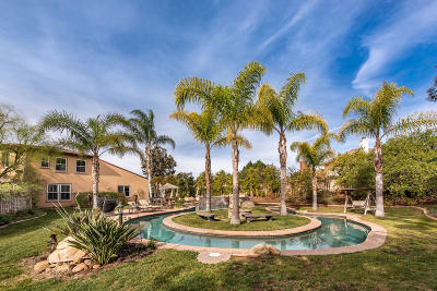 Simi Valley Single Family Home For Sale: 551 Running Creek Court