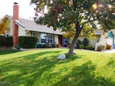 Agoura Hills Single Family Home For Sale: 6362 Acadia Avenue