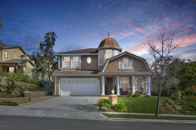 Newbury Park Single Family Home For Sale: 24 Via Mariposa