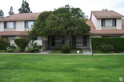 Camarillo Rental For Rent: 386 Sonora Drive