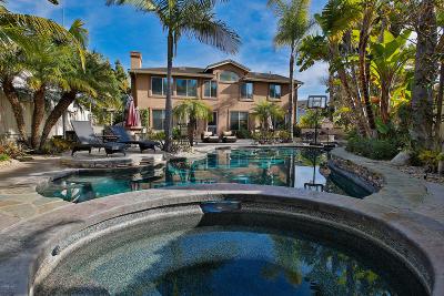 Camarillo Single Family Home For Sale: 2005 Alborada Drive