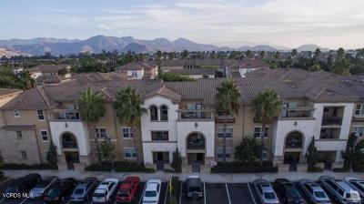 Camarillo Rental For Rent: 259 Riverdale Court #239