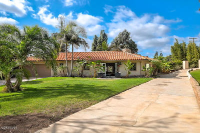 Camarillo Single Family Home For Sale: 102 La Patera Drive