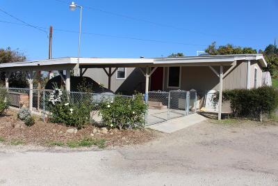 Santa Paula  Single Family Home For Sale: 16828 S Mountain Road