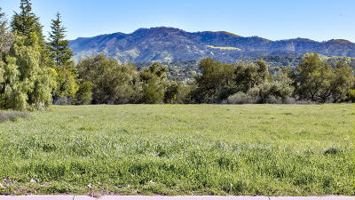 Ojai Residential Lots & Land For Sale: 12590 Macdonald Drive
