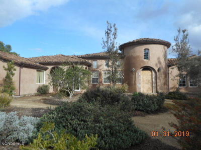 Camarillo Single Family Home For Sale: 366 Avocado Place