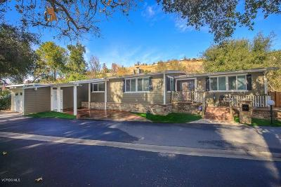 Westlake Village Single Family Home For Sale: 59 Robin Hood Lane