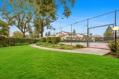 Camarillo Single Family Home For Sale: 630 Chapala Drive