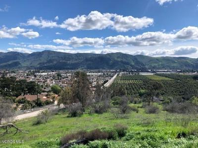 Santa Paula Residential Lots & Land For Sale: 000 Peck And Foothill Road