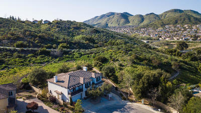 Newbury Park Single Family Home For Sale: 679 Rabbit Creek Lane