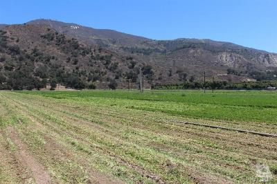 Ventura County Residential Lots & Land For Sale: 17550 South Mountain
