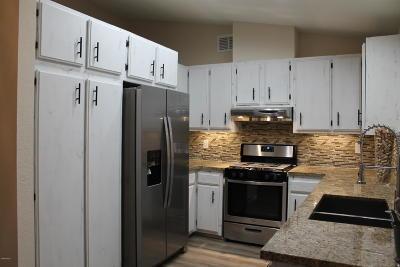 Ojai Single Family Home Active Under Contract: 11827 Mirror Lake Avenue