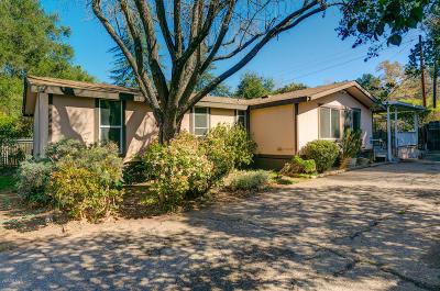 Ojai Single Family Home For Sale: 11235 Ventura Avenue