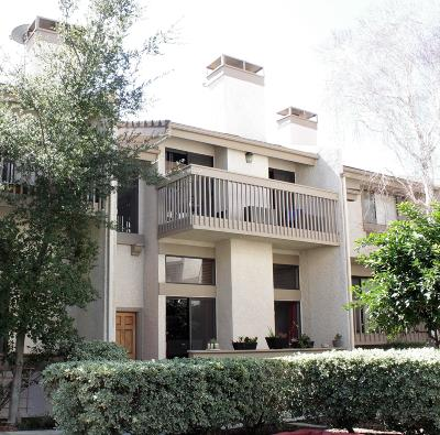 Calabasas Condo/Townhouse For Sale: 26006 Alizia Canyon Drive #E