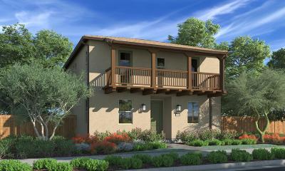 Ventura Single Family Home For Sale: 10532 San Bruno Street