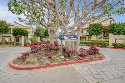 Oxnard Condo/Townhouse For Sale: 4446 Antigua Way
