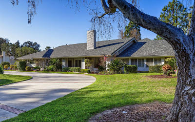 Somis Single Family Home For Sale: 6185 Palomino Circle